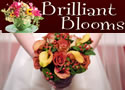 Brilliant Blooms : Exquisite Floral Designs for Special Occasions